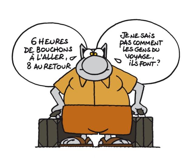 Le chat - Page 16 39875910