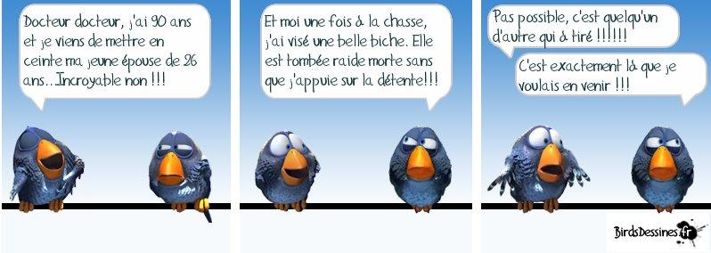 Les Birds - Page 5 41833210
