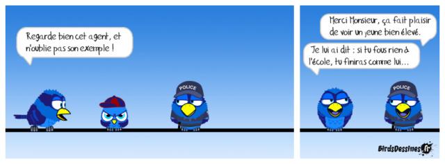 Les birds - Page 26 41974110
