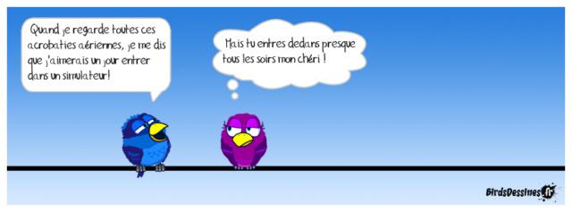 Les birds - Page 26 42058310