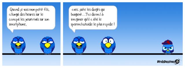 Les birds - Page 26 42059510
