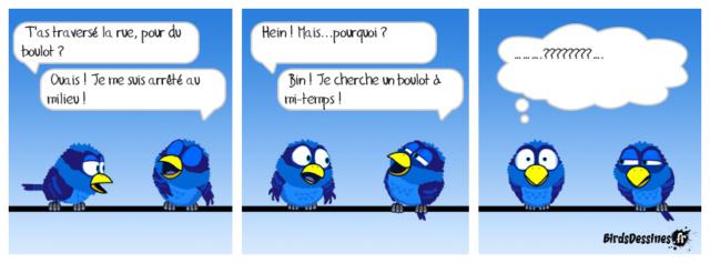 Les birds - Page 27 42301310