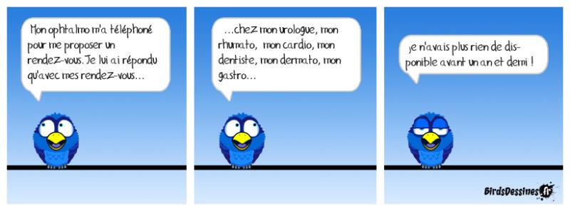 Les Birds - Page 11 42497110