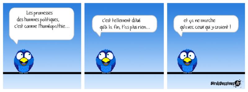 Les Birds - Page 12 42724910