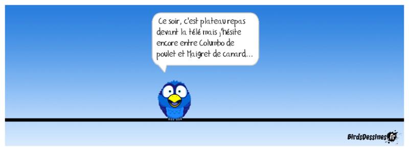 Les Birds - Page 12 42756510