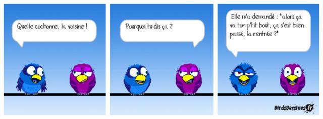 Les birds - Page 27 42773810