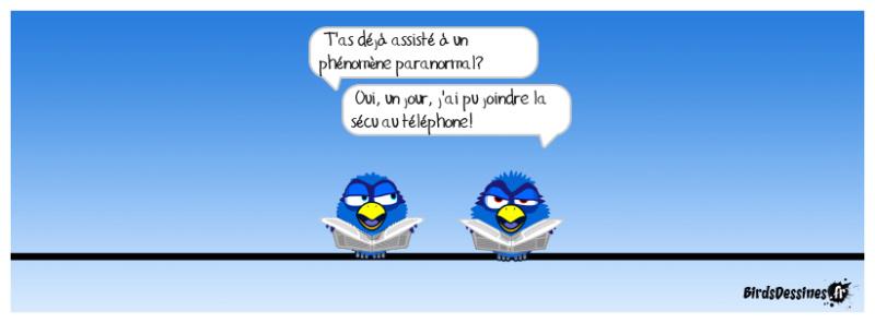 Les birds - Page 27 42827310