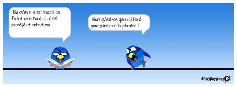 Les Birds - Page 12 43066010