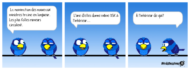 Les birds - Page 28 43713010