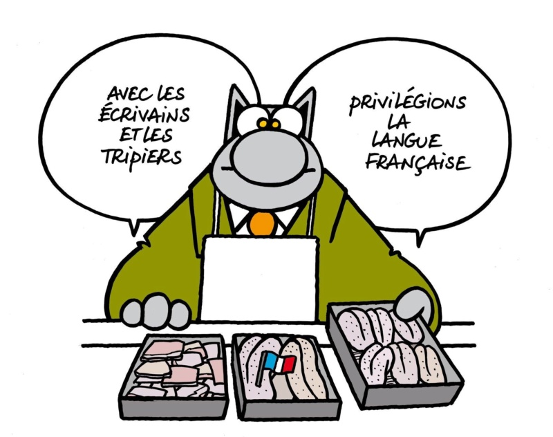 Le chat - Page 40 43879310