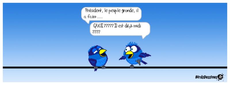 Les Birds - Page 12 46456110