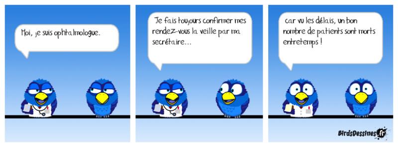 Les Birds - Page 12 46488410