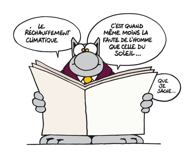 Le chat - Page 40 46508910