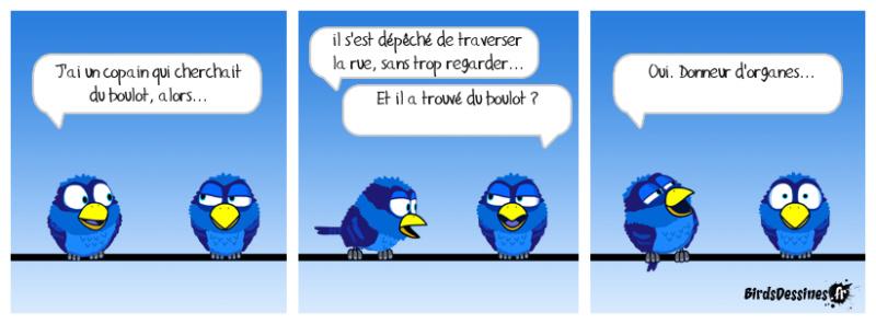 Les Birds - Page 12 46741510