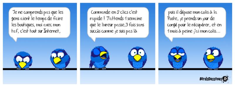 Les Birds - Page 12 46913710