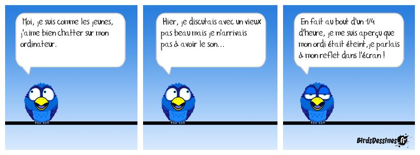 Les birds - Page 32 48038510