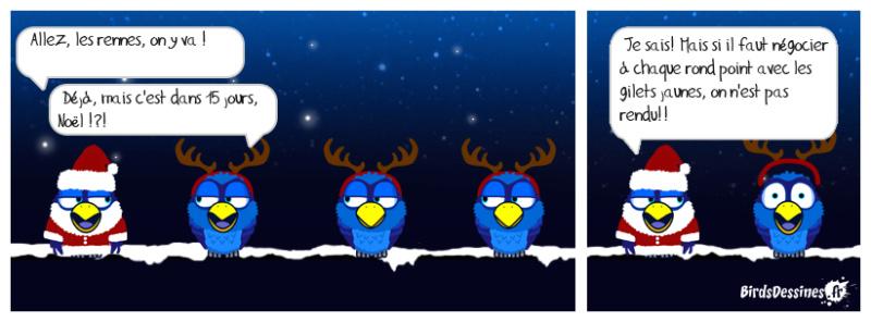 Les birds - Page 32 48340910