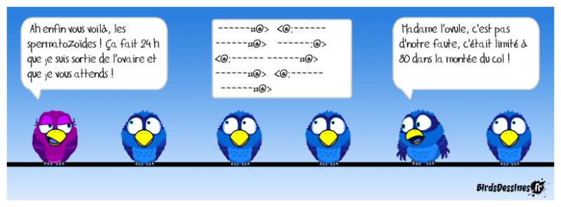 Les birds - Page 32 48355910