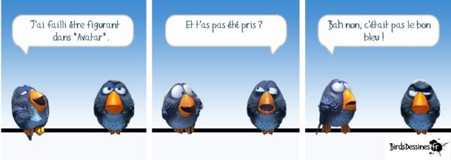 Les Birds - Page 5 52288810