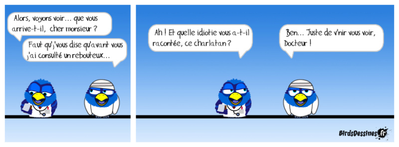 Les birds 52702510