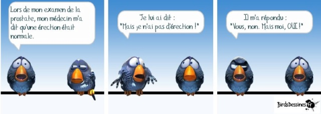 Les Birds - Page 5 52761610