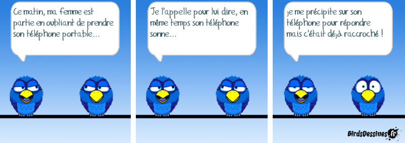 Les birds 52762210