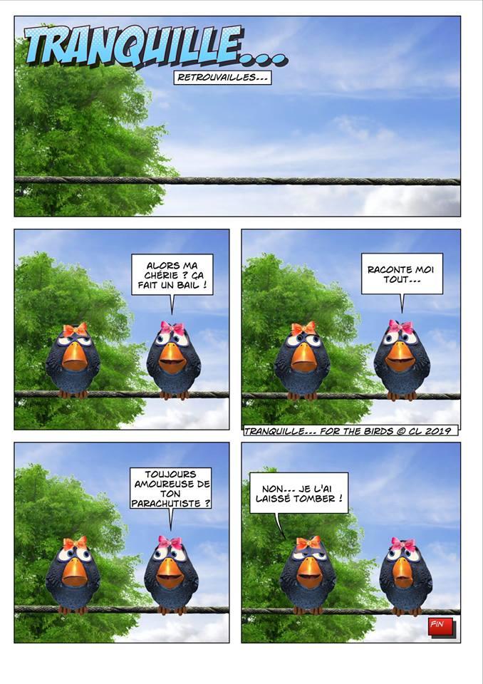Les birds 52762310