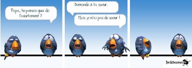 Les birds - Page 14 52881510
