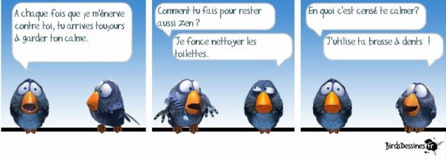 Les birds - Page 14 53848510