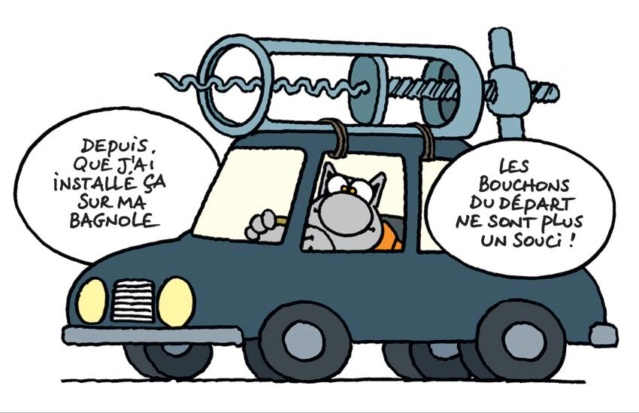 Le chat - Page 14 54685610