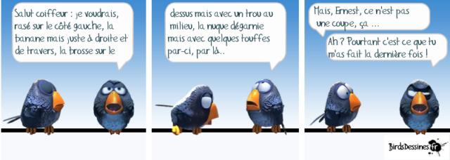 Les birds - Page 14 54692810