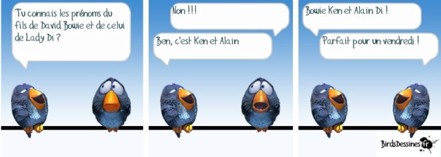 Les birds - Page 14 55702310