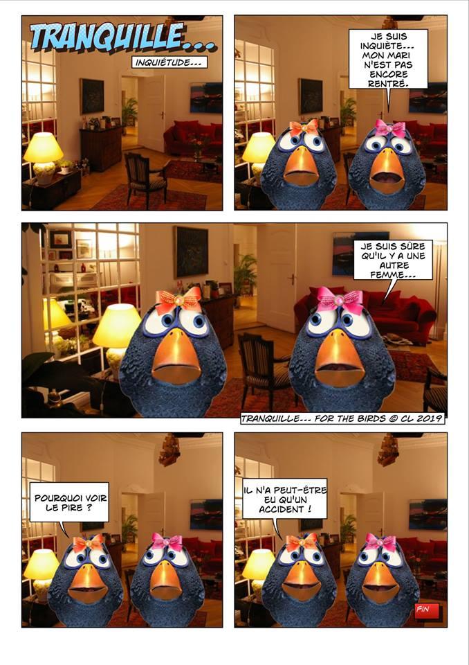 Les birds - Page 7 56468210