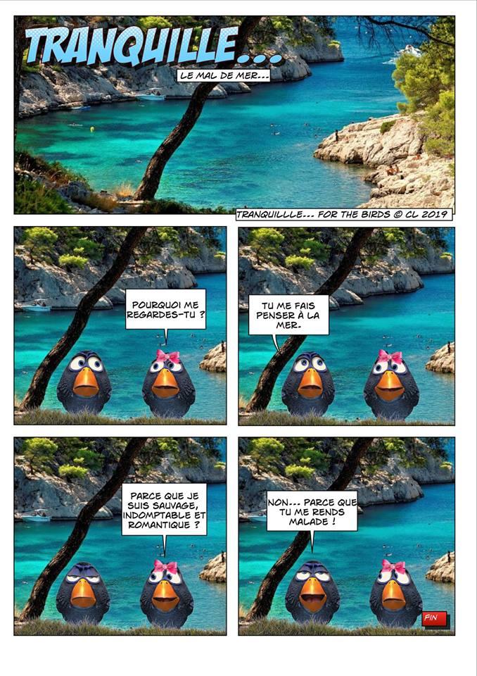 Les birds - Page 7 56828010