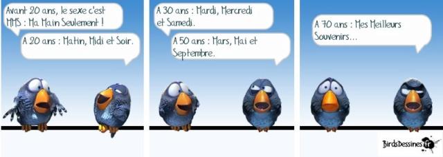 Les birds - Page 14 57606310