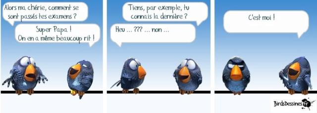 Les birds - Page 15 59874110