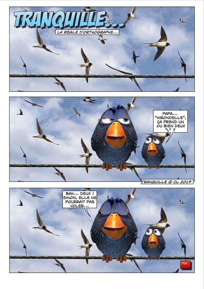 Les birds - Page 12 60009610