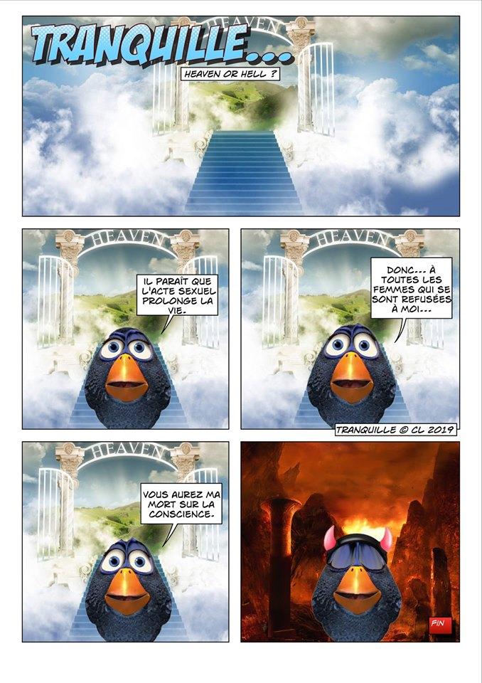 Les birds - Page 12 60191210