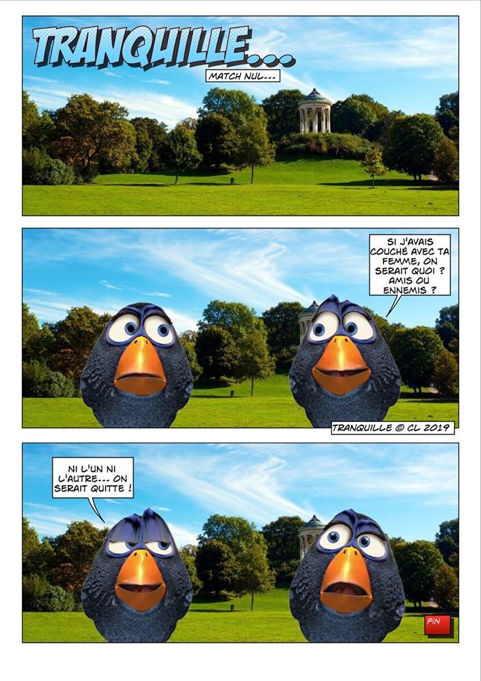 Les birds - Page 12 60353010