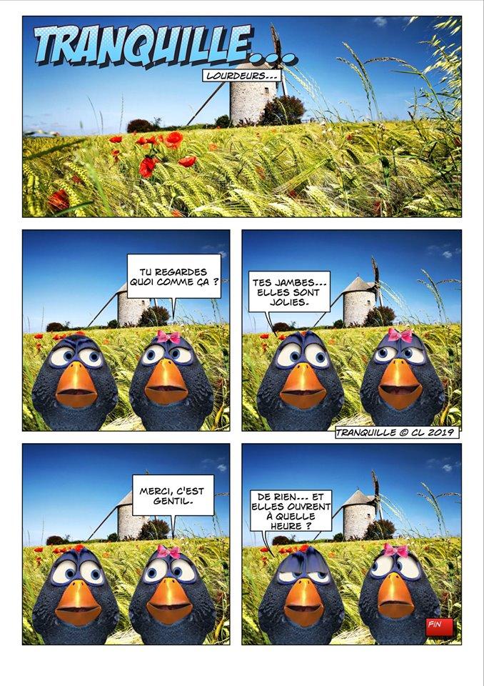 Les birds - Page 12 60734610