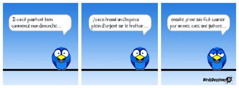 Les birds - Page 13 60966610