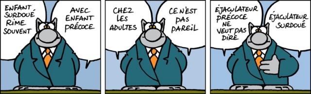 Le chat - Page 14 62171510
