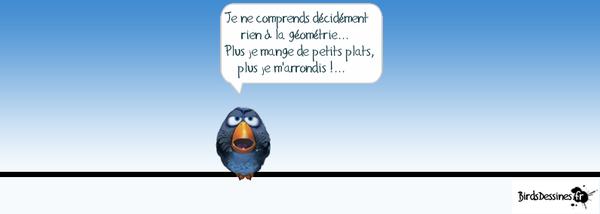 Les birds - Page 10 83373310