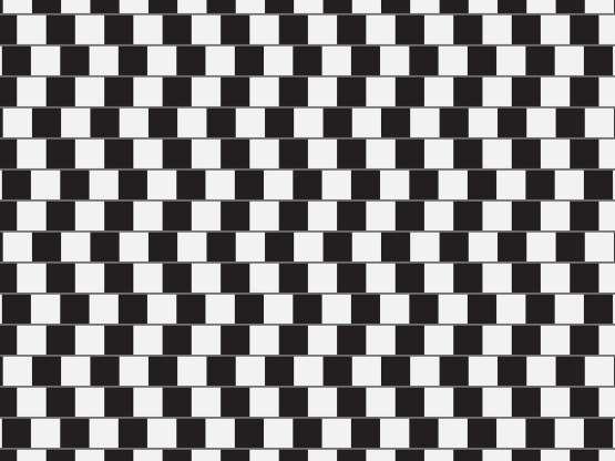 Illusions d'optique - Page 14 Aanuah10