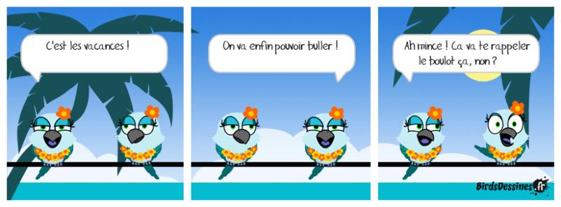 Les Birds - Page 3 Alconi10