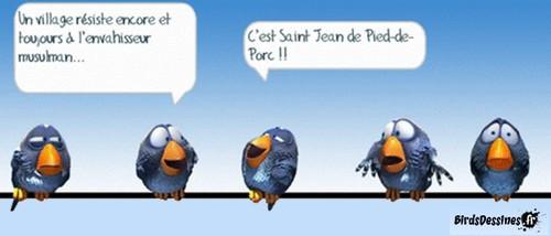 Les Birds - Page 4 Awgcqj10