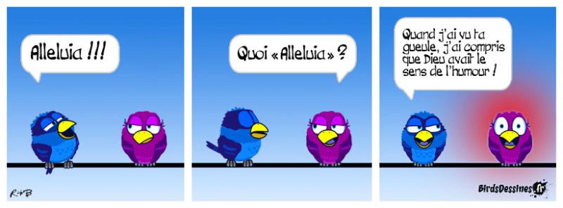 Les Birds - Page 3 Birds-10