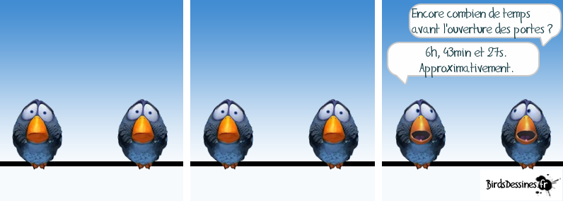Les birds - Page 10 Birds_10
