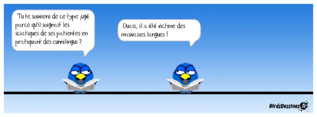 Les birds - Page 19 Gavera11