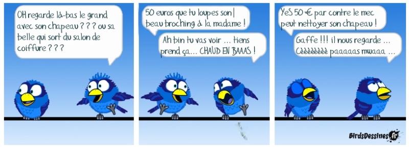 Les Birds - Page 3 Ia4cef10